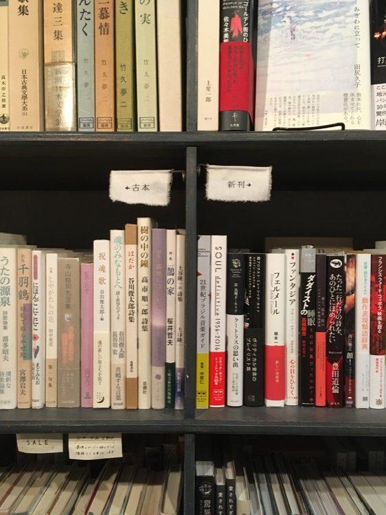 書架上有新刊、有舊書。